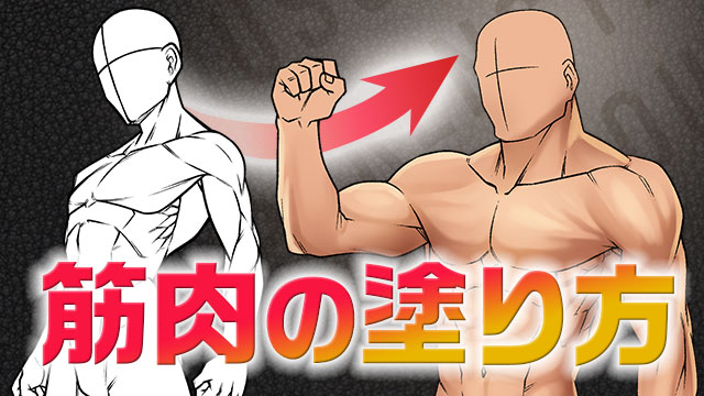 理想のカラダを仕上げる!筋肉の塗り方講座