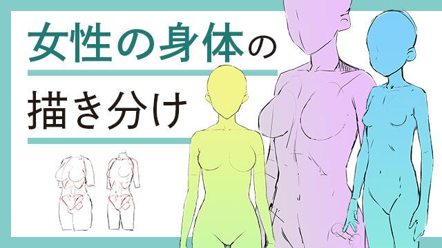 女性の身体の描き分け講座