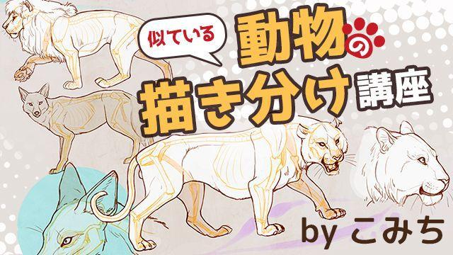 動物イラストの描き方講座の決定版!似ている動物の描き方講座